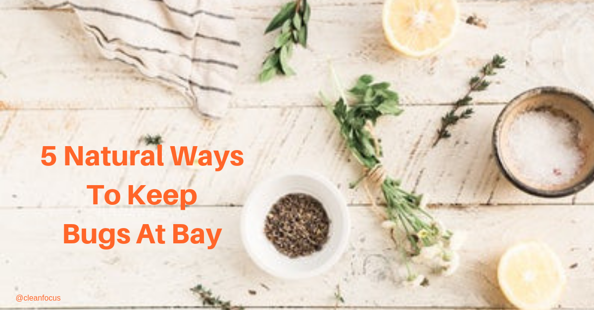 5 natural ways to keep bugs at bay